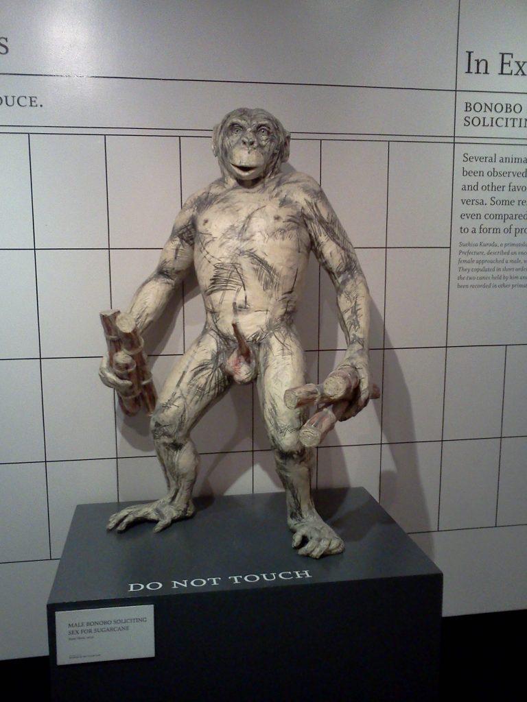 museum-of-sex